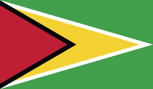 прапор Гайани (world-00063)
