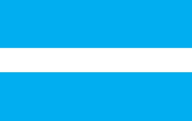 Прапор Кременчука (flag-145)