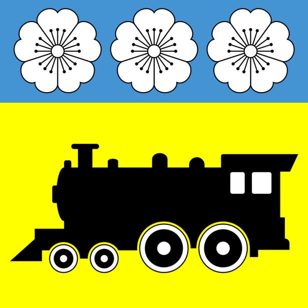 Прапор Синельникового (flag-175)