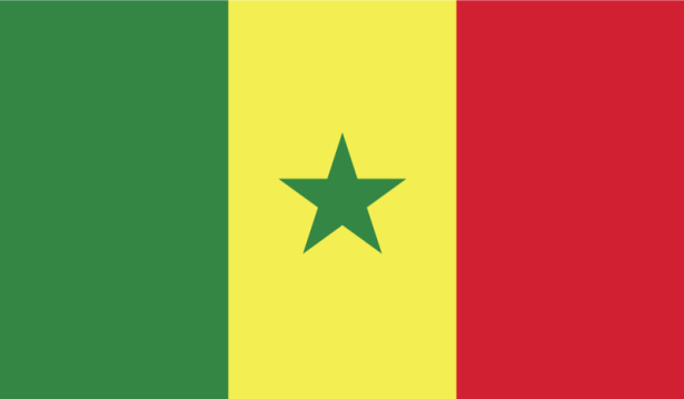 прапор Сенегалу (world-00045)