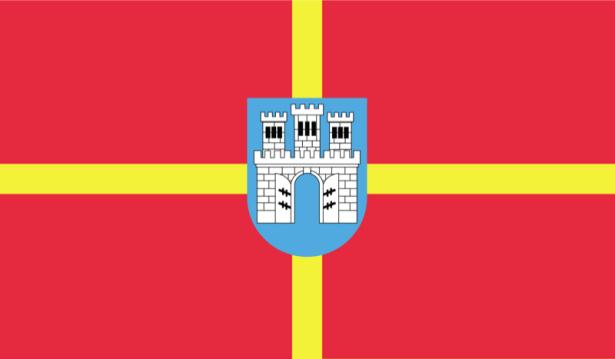прапор Житомирської області (flag-00015)