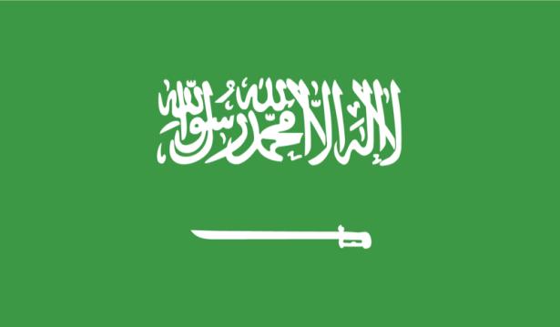 прапор Саудівської Аравії (world-00043)
