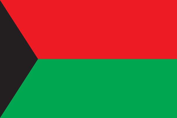 Прапор Дебальцевого (flag-118)
