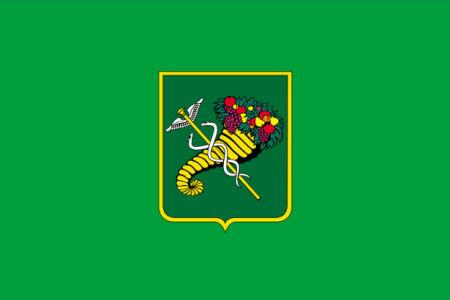 Прапор міста Харків (flag-00095)