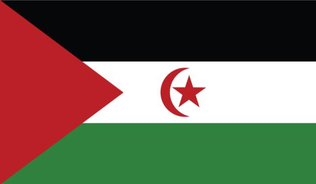 Прапор Західної Сахари (world-00142)