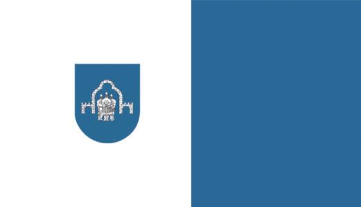 Прапор Ратнівського району (flag-00076)