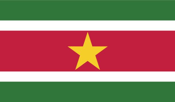 прапор Суринаму (world-00104)