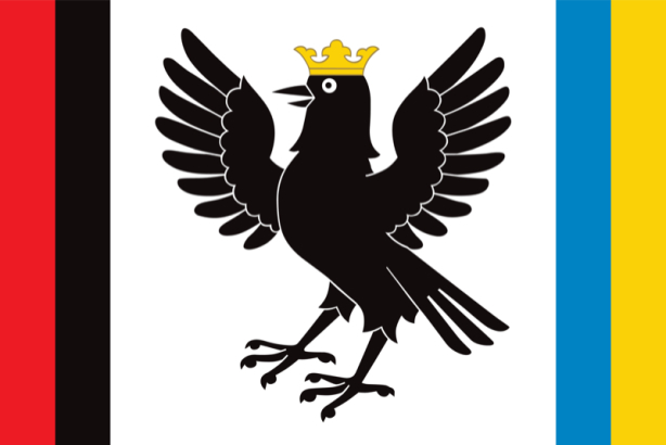 прапор Івано-Франківської області (flag-00037)