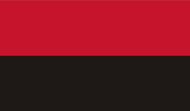 прапор Організації українських націоналістів (flag-00025)