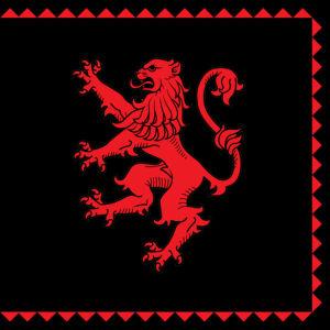 Прапор ФК Карпати (football-00033)