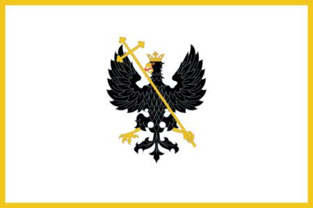 Прапор міста Чернігова (flag-00098)