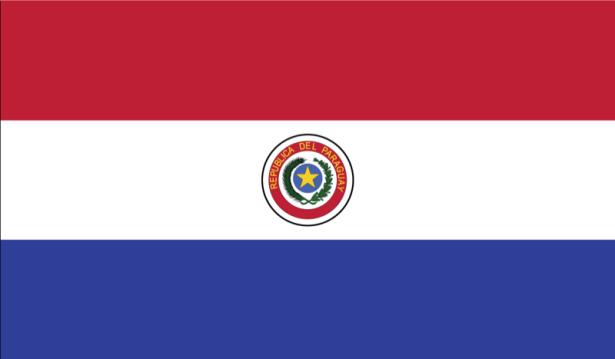 прапор Парагваю (world-00018)