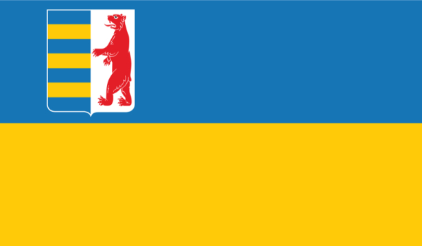 Прапор Закарпатської області (flag-00042)
