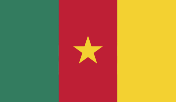 Прапор Камеруну (world-00193)