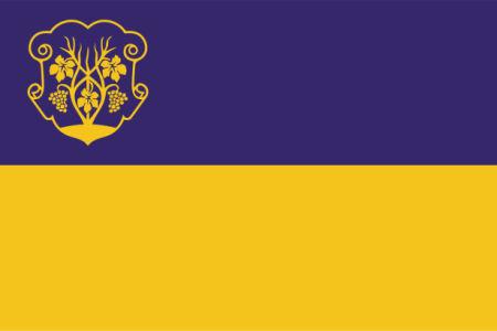 Прапор міста Ужгород (flag-00086)