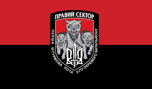 Прапор Вовки Подолянина (military-00054)